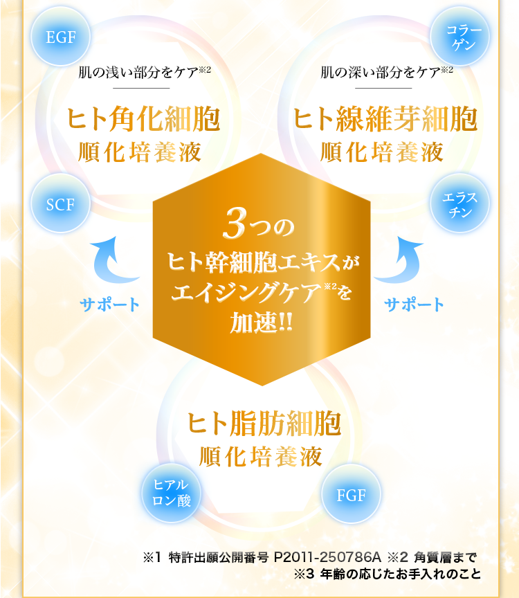 3つのヒト幹細胞エキスがエイジングケア※を加速!!